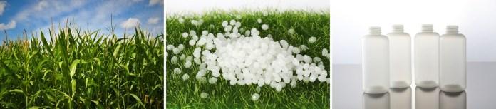 Accor biodegradable solution