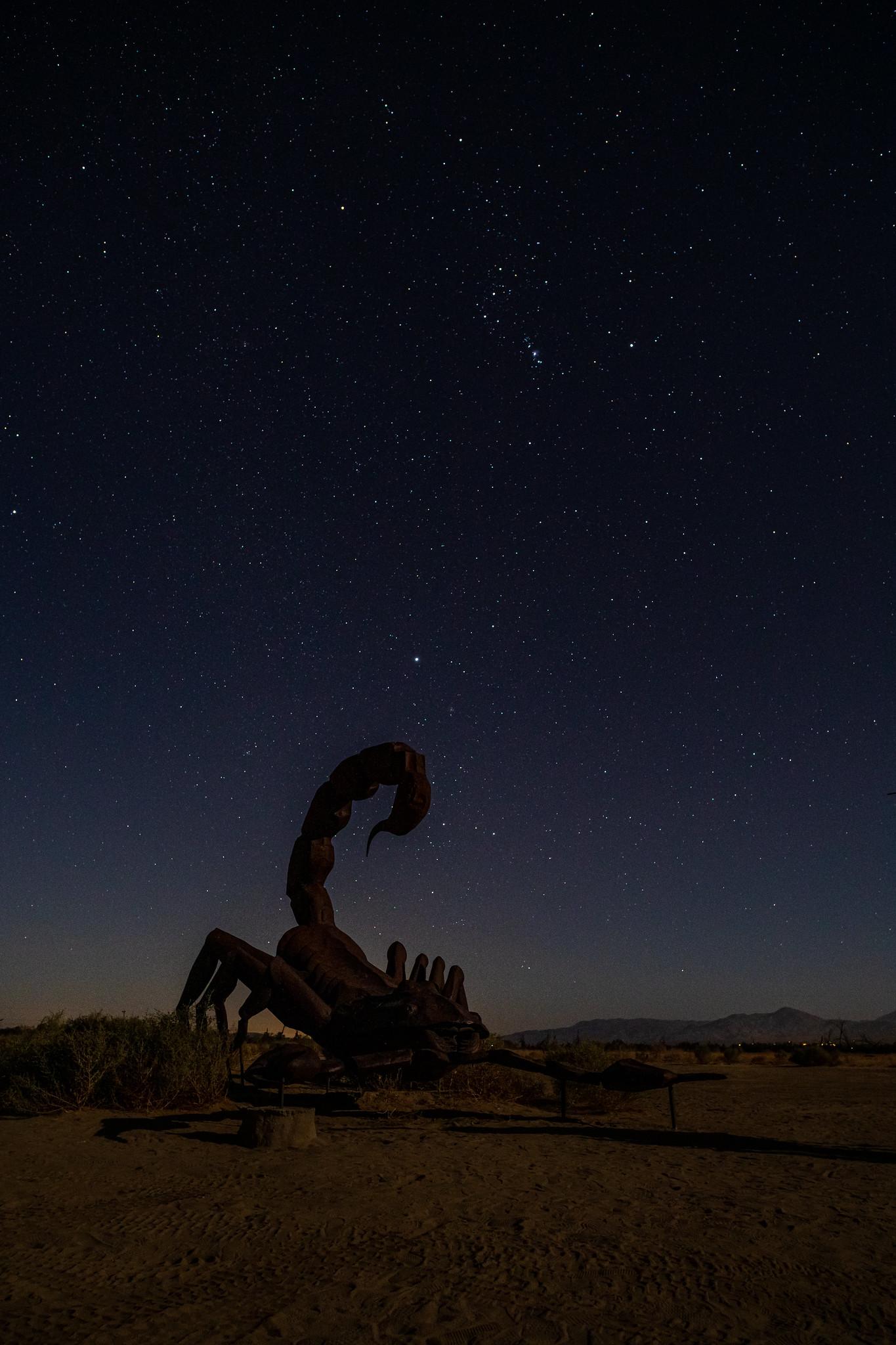 11.24. Anza Borrego State Park
