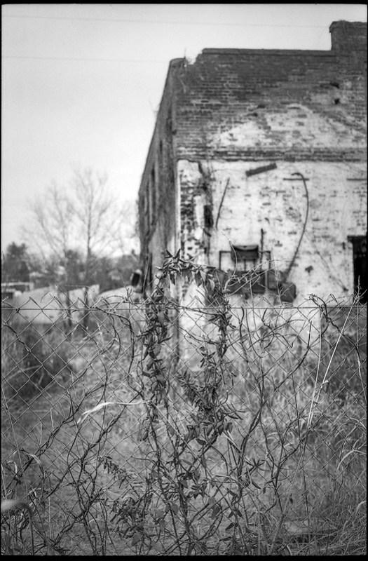 meandering vines, old abandoned mill, metal fence, dusk, River District, Asheville, NC, Minolta XG-M, Super Albinon 28mm f-2.8, Ilford XP4+, Moersch Eco film developer, 12.17.20