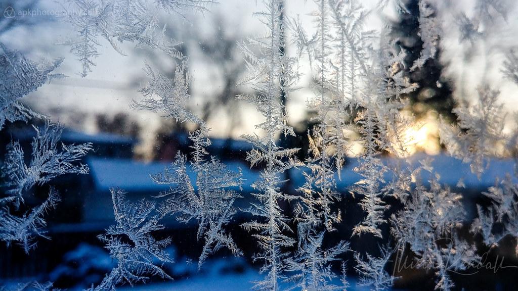 Ice crystals, winter sunrise