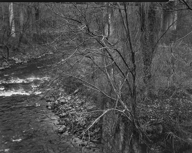 winter landscape, bare trees, distant overpass, late light, tributary, French Broad River, Asheville, NC, Graflex Crown Graphic, Schneider Symmar 150mm, f-5.6, Fomapan 400, HC-110 developer, 12.23.20