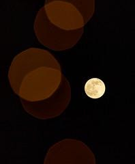 Full Moon (NHQ202012290002)