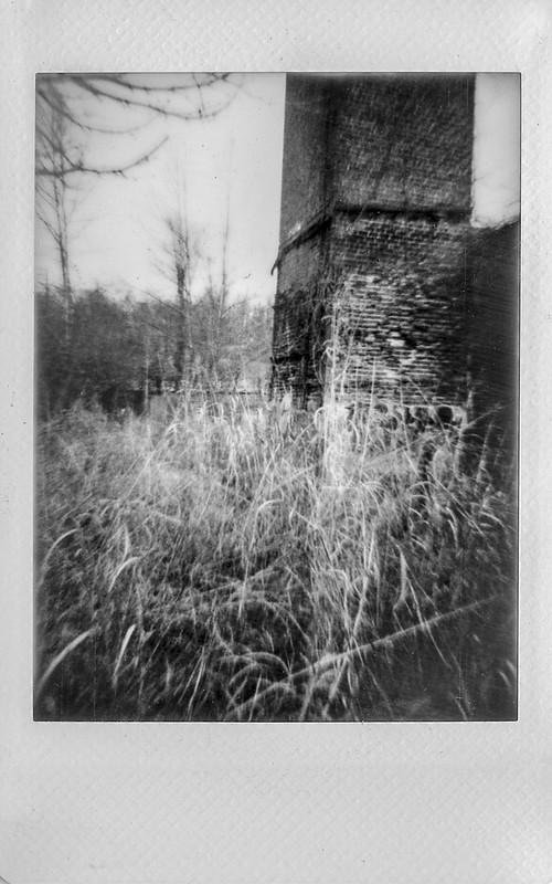 old brick mill, abandoned, tall grasses, winter landscape, River District, Asheville, NC, Lomo'Instant, Fujifilm Instax Mini Monochrome, 12.31.20