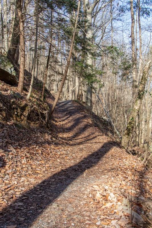Sitton's Gulch Trail74