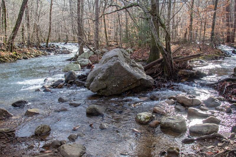 Sitton's Gulch Trail3