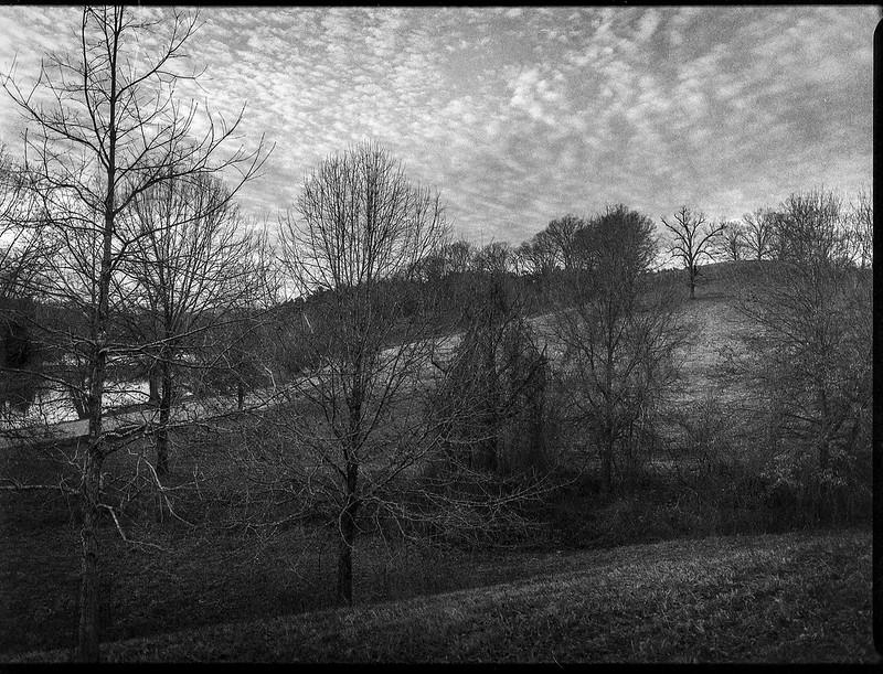 winter landscape, dusk, bare trees, speckled sky, lagoon, Biltmore Estate, Asheville, NC, Mamiya 645 Pro, mamiya sekor 45mm f-2.5,  Fomapan 400, HC-110 developer, 12.29.20
