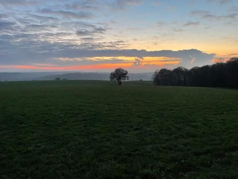 Dawn #nofilter