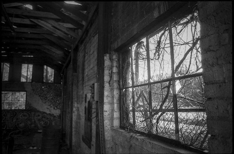 interior, window, abandoned mill, urban decay, River District, Asheville, NC, Minolta XG-M, Super Albinon 28mm f-2.8, Fomapan 400, HC-110 developer, 1.16.21