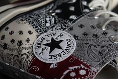 Offspring x Converse