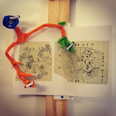 5. Neurone tricolore de l'arc réflexe