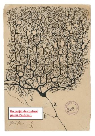 Neurone de Purkinje - Cajal - projet couture