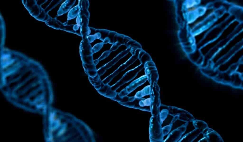 des-chercheurs-inventent-un-nouvel-outil-édition-des-gènes