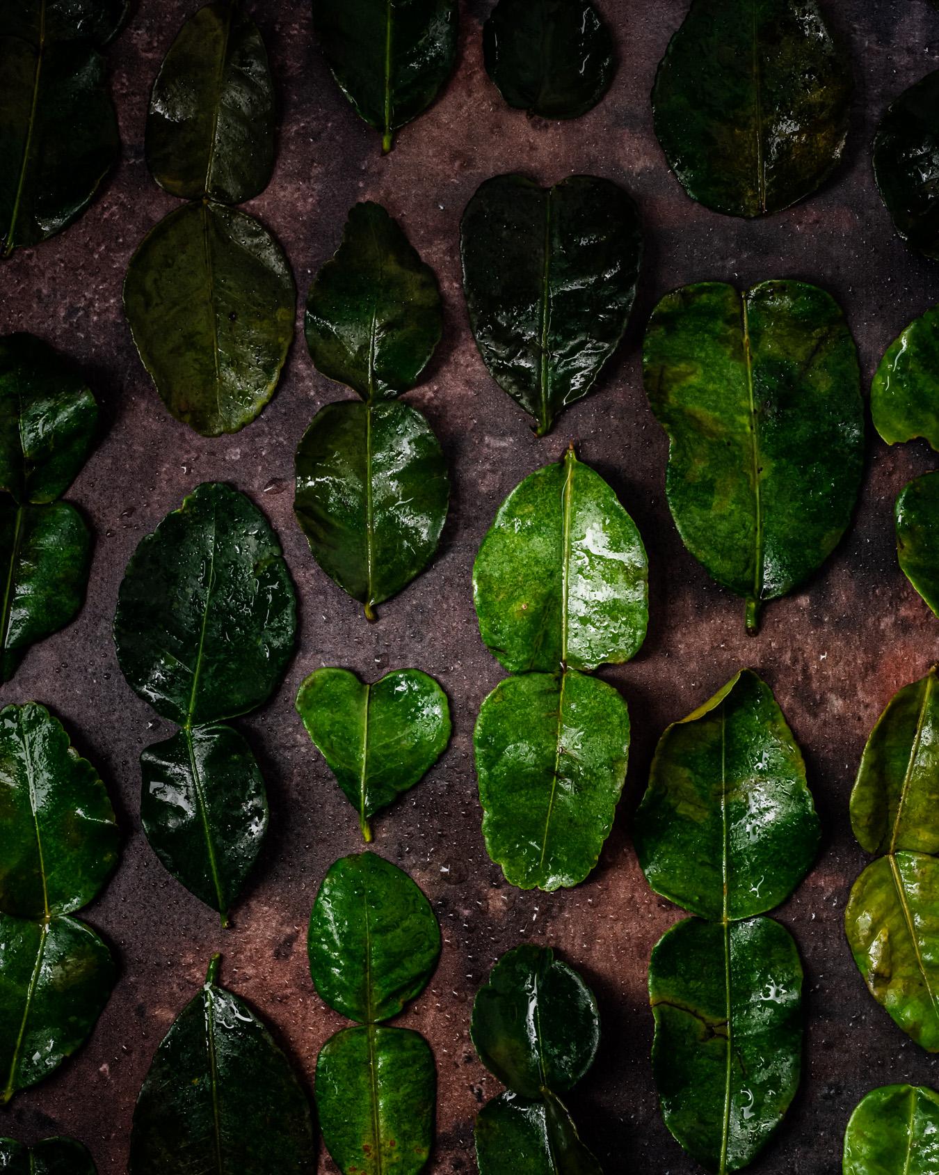 kaffirlimen lehdet