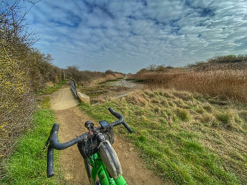 Chichester gravel loop - Sidlesham
