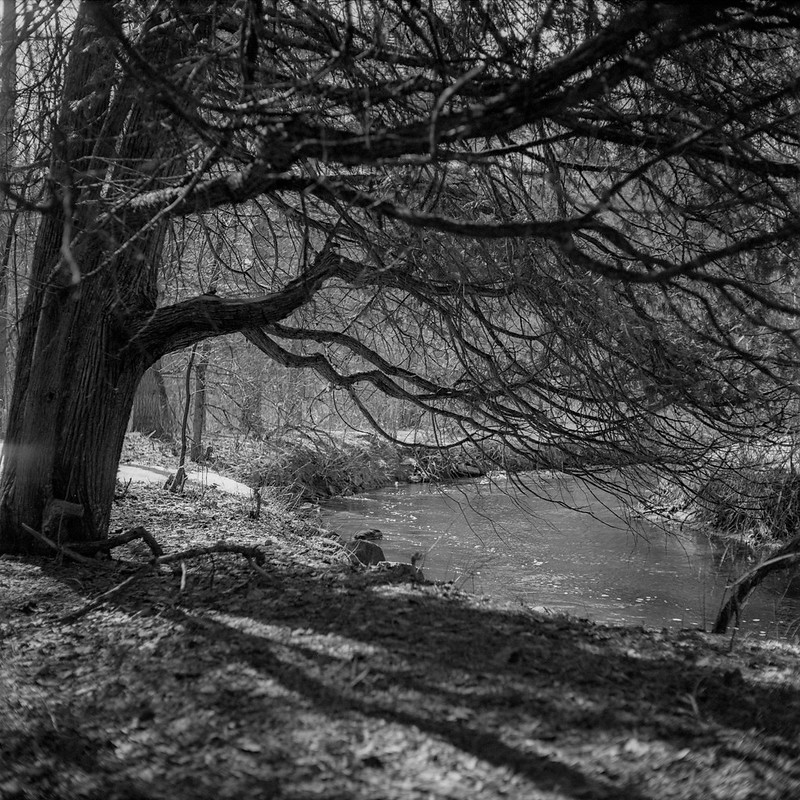 Geyser Creek 3, Winter Thaw
