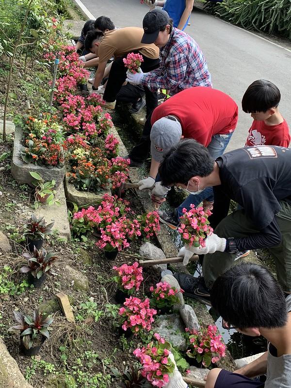 種植花草美化環境