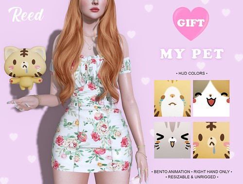 GIFT   REED - MY PET