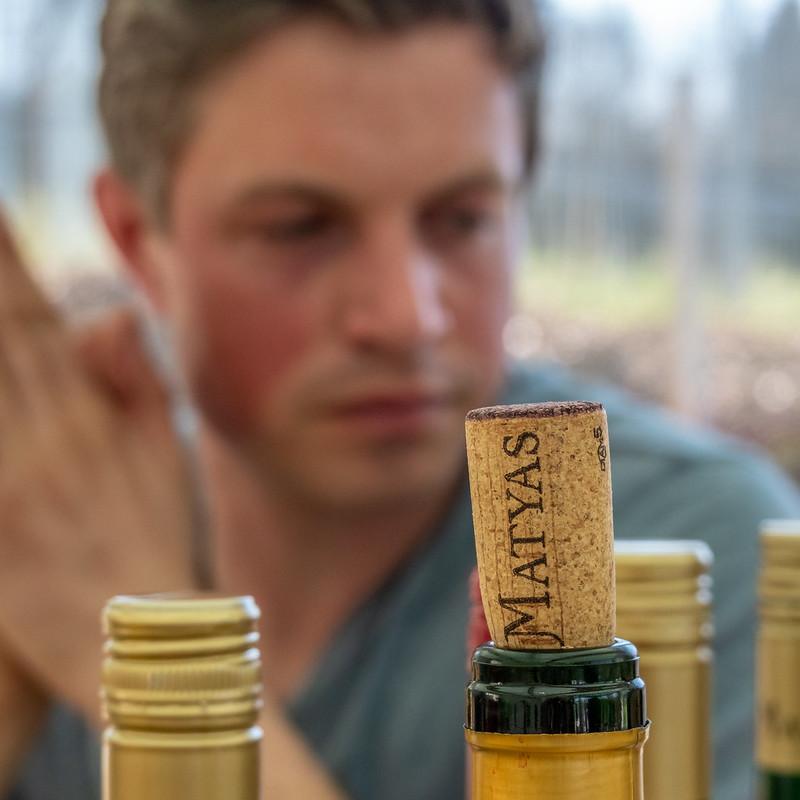Im Weingut Matyas