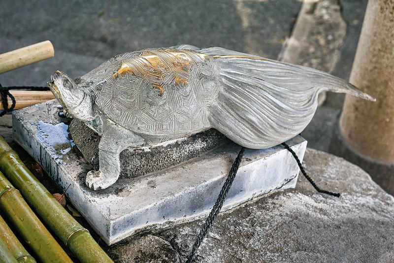 Kameido Tenjin Shrine Wisteria 2021-19
