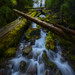 Oregon Waterfalls series #8