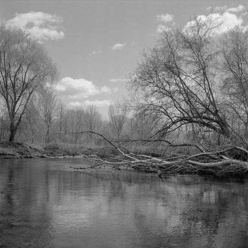Spring, Grays Landing 4