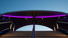 New Bridge purple