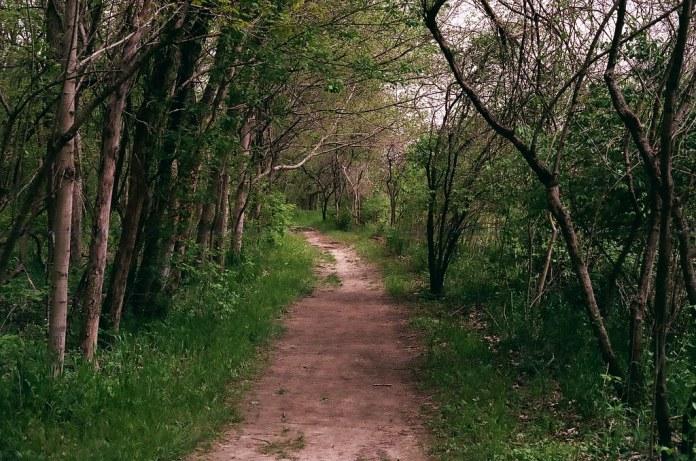 Path at Starkey Park