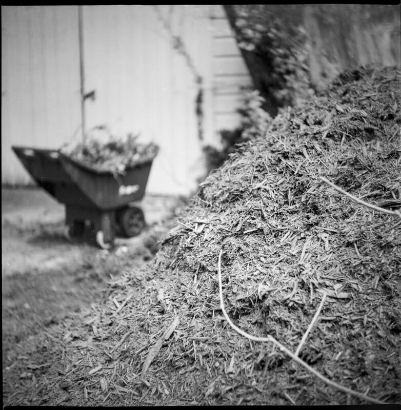 mulch pile, twigs, driveway, garden cart, garage doors, Asheville, NC, Yashica D, Fomapan 200, Ilfosol 3 developer, 5.29.21