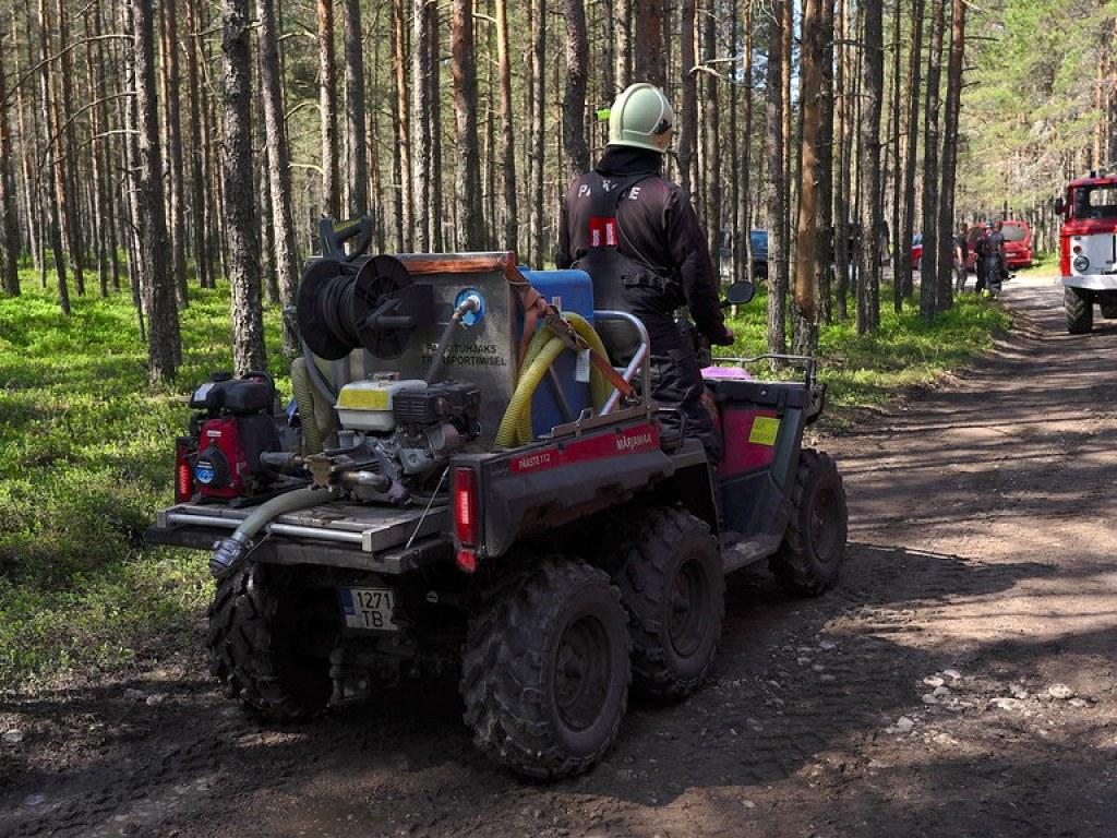 Höbringi metsatulekahju