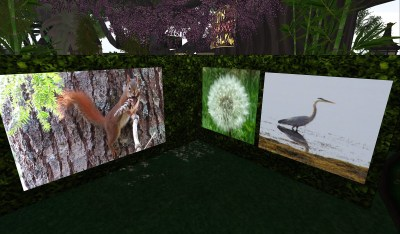 Closer view of 3 of Buttercup's art works. One is a squirrel, one a daisy seed bloom and one a Great blue heron