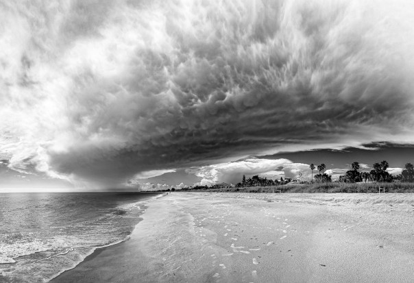 Stormy Shore