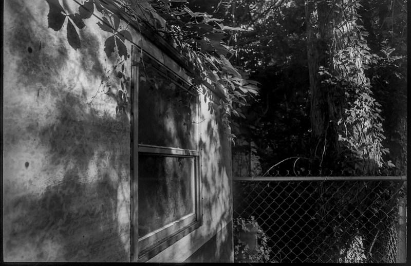 old storage shed, near sunset, yard, Asheville,  NC, Minolta XG-M, Fomapan 400, HC-110 developer, 7.2.21
