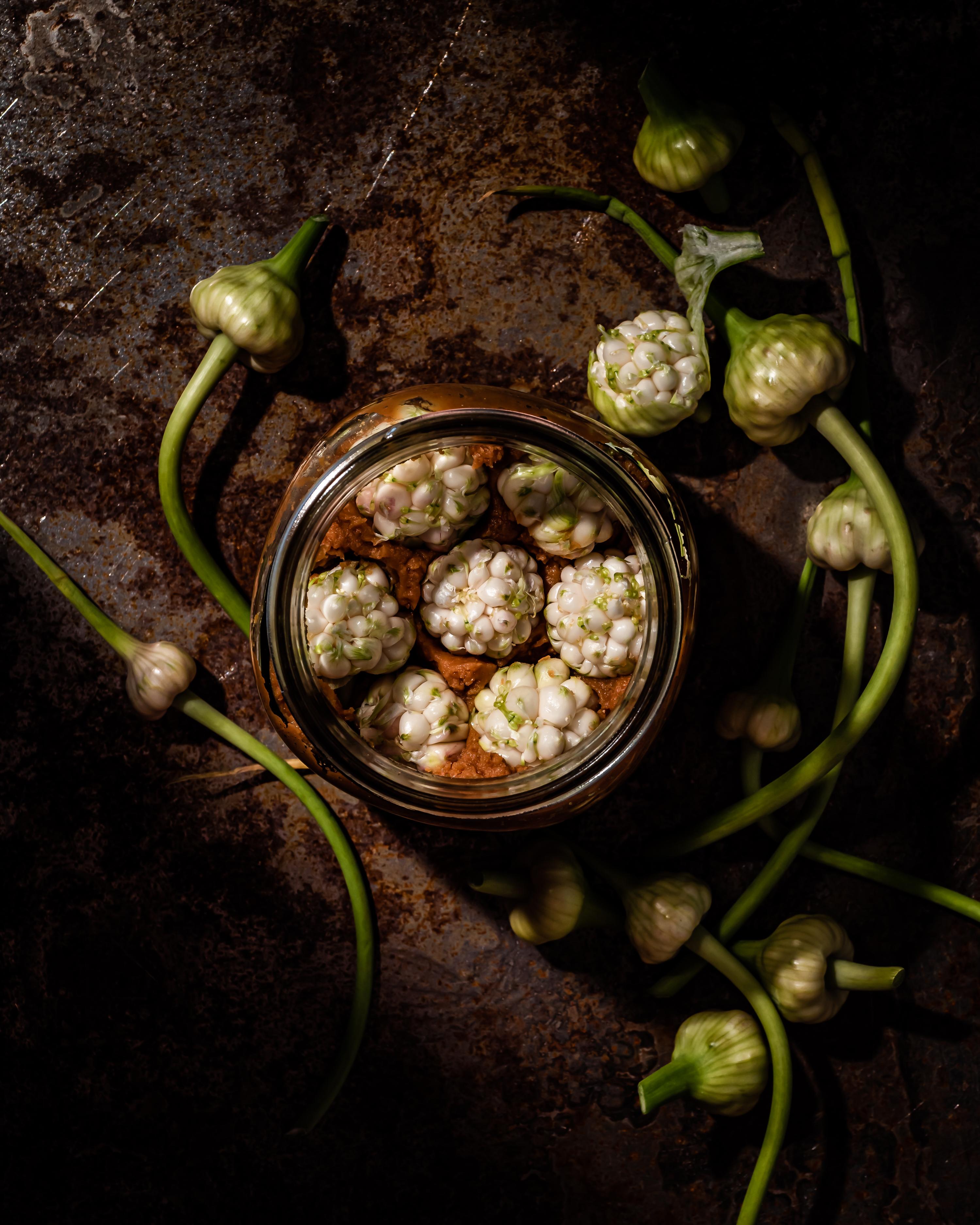 miso fermented garlic