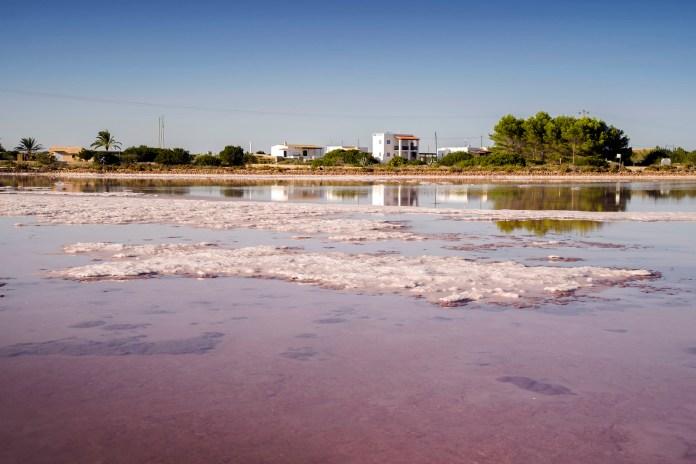 塞斯盐自然公园的盐田 巴利亞利群島