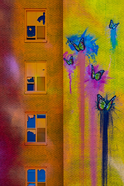Rainbow-ButterFly-Mural (1 of 1)-2
