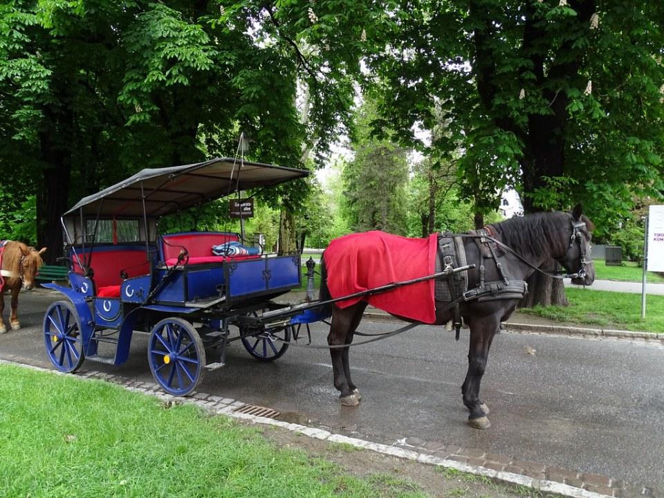 Coche de caballos medio de transporte Innsbruck Austria 04