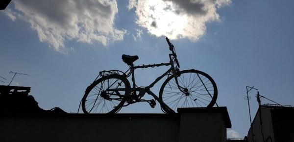 Riding High... Sisak Croatia