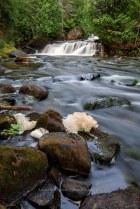 Opimika Creek Falls