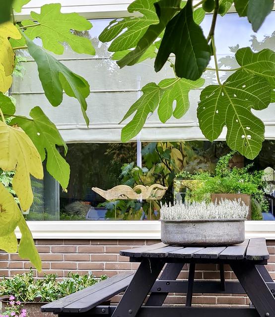 Zinken bak met heide op picknicktafel ornament op voet vensterbank decoratie landelijk