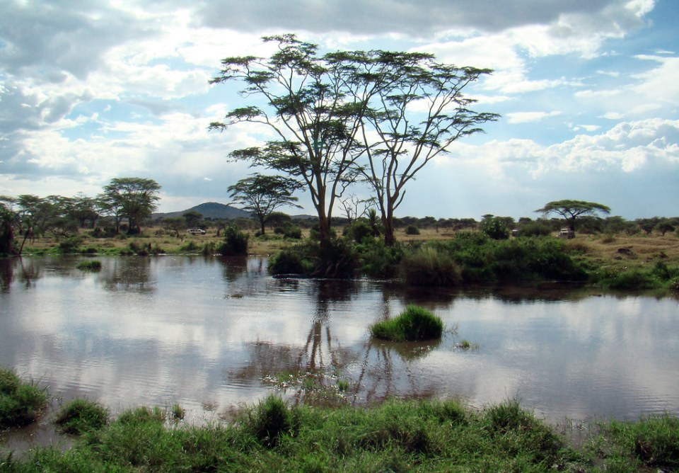 lago Parque Nacional Serengueti Tanzania 11