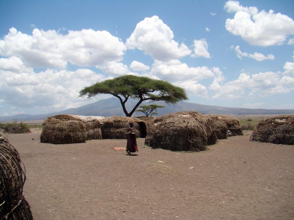 Manyattas Chozas, persona y arbol en aldea Poblado Masai Tanzania 02