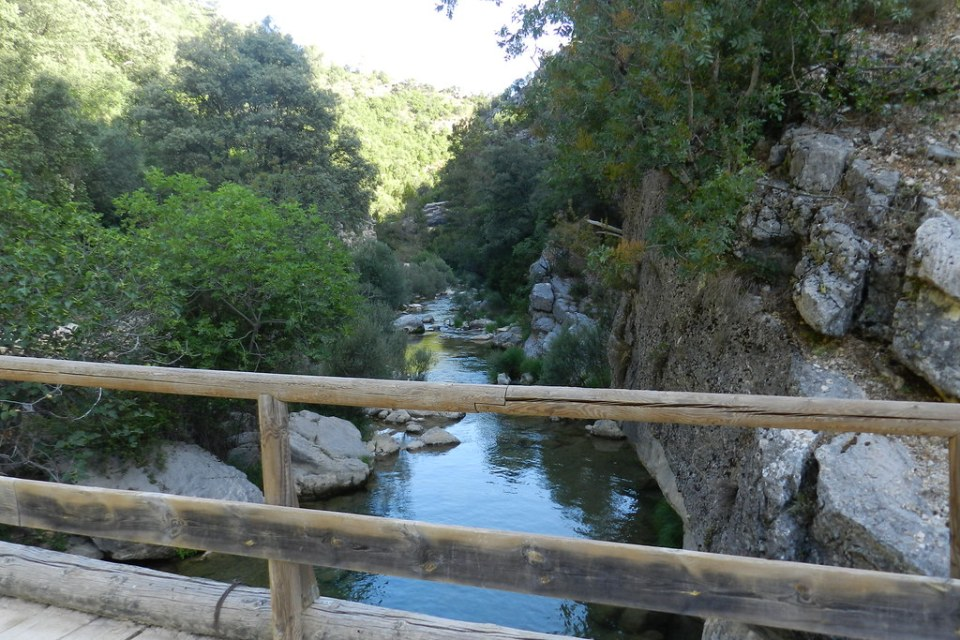 Sierra de Cazorla Rio Borosa Jaen 06