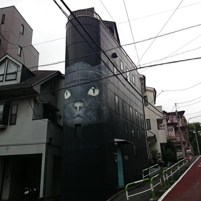 일본의 유명 저널리스트인 다치바나 다카시씨가 책보관과 집필을 위해 만든 고양이빌딩. 신문에서 보던 빌딩을… | Flickr