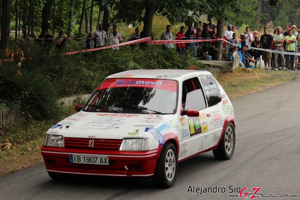 x_rally_sur_do_condado_155_20150307_1355662755
