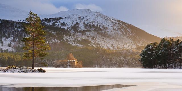 Winter Glow II, Loch an Eilein - Version 2