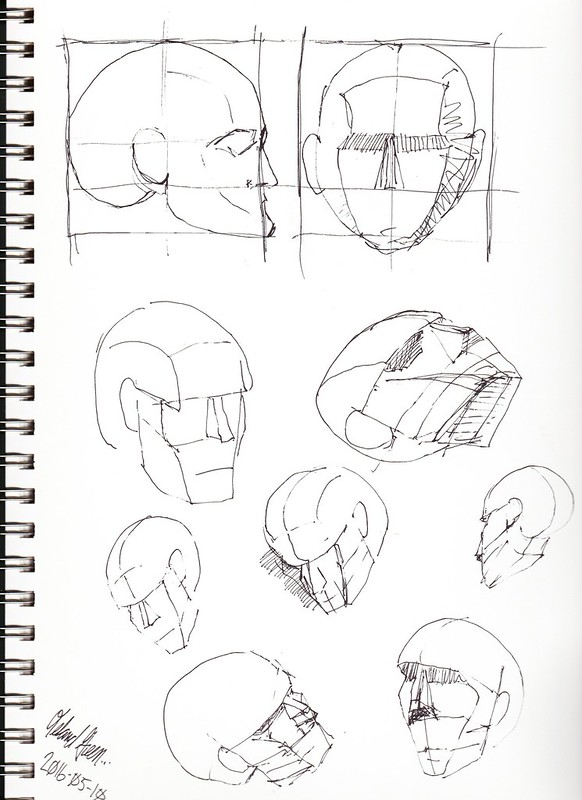 Male head studies