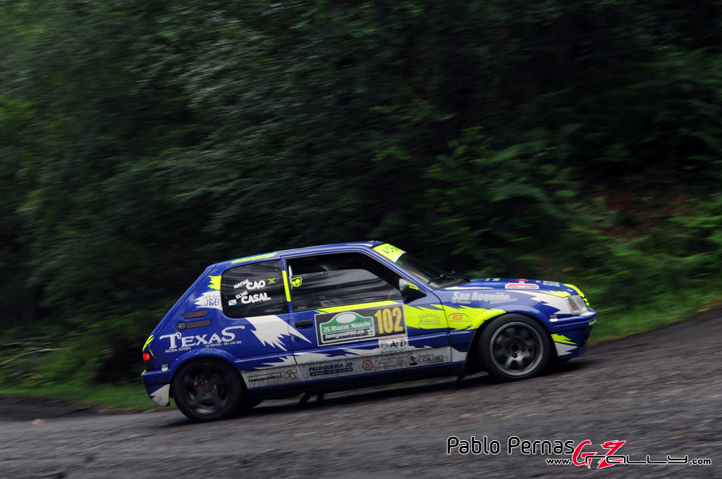 rally_de_naron_2012_-_paul_66_20150304_1312311865
