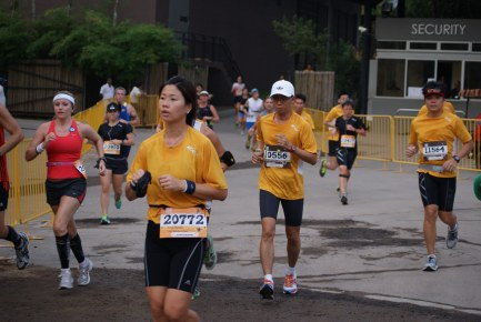 Safari Zoo Run 2012