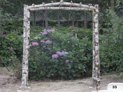 Branch Arch