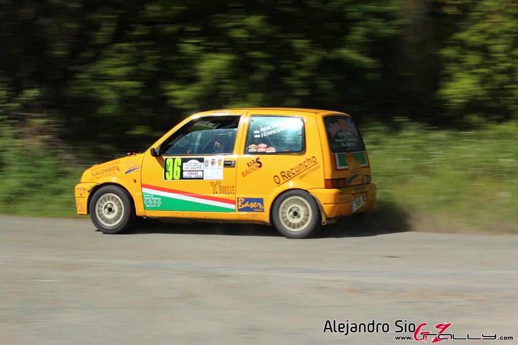 vi_rally_comarca_da_ulloa_206_20150307_1962703539